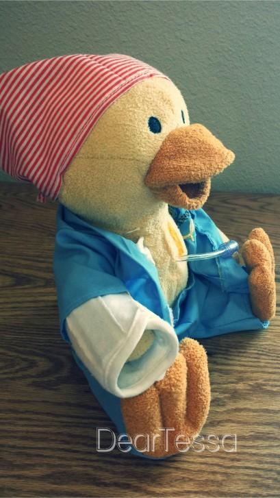 Cehmo Duck 3